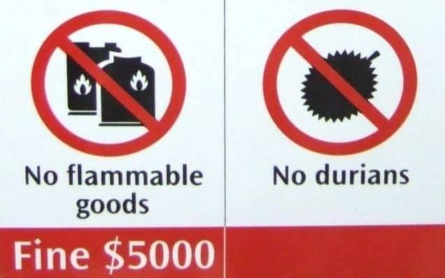 singapur-yasaklar-durian
